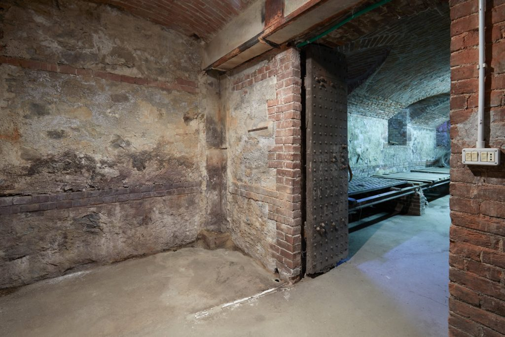 the raw cellar space